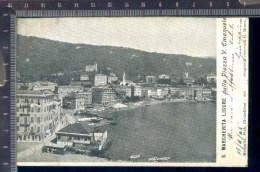382A/210 CARTOLINA POSTALE 1905 S. MARGHERITA LIGURE DALLA PIAZZA V. EMANUELE VIAGGIATA PER RAPALLO DI MONEGLIA - Genova