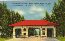 "West Entrance To Gandy Bridge Showing Avenue Of Pines. St. Petersburg Florida ""The Sunshine City"" - St Petersburg"