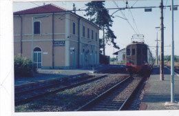 CARD PHOTO STAZIONE CASTELLAZZO BORMIDA CASALCERMELLI (ALESSANDRIA)    2 SCANNER   -FG-N-2 -0882--24626-627 - Bahnhöfe Mit Zügen