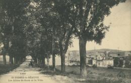 43 SAINT DIDIER EN VELAY / Saint-Didier-la-Séauve, Les Allées Saint-Roch Et La Ville / - Saint Didier En Velay