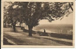ANGOULEME , Vallée De La Charente Vue Du Rempart Beaulieu , 1929 , CPA ANIMEE - Angouleme