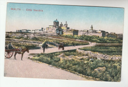 OLD Postcard MALTA CITTA  VECCHIA Horse - Malta