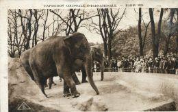 N°44532 -cpa Parc Zoologique -éléphants- - Éléphants