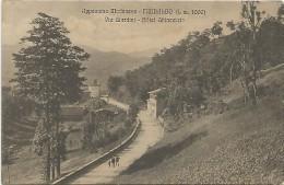 Fiumalbo, Modena, 11.4.1917, Via Giardini, Hotel Ghiacciaio. - Modena