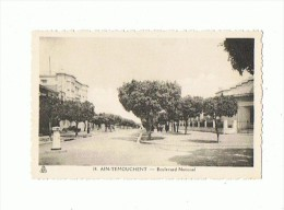 CPSM ALGERIE AIN TEMOUCHENT Boulevard National - Other Cities