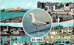 St Ives    6     5 Views - Autres