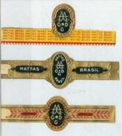 3 Alte Zigarrenbanderolen - Bauchbinden Der Zigarrenmarke: Mattas Brasil - Bagues De Cigares