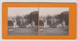 Vues Stéréoscopiques Photo Sur Carton - Algérie - Devant Leurs Gourbis (femmes & Enfants) - Photos Stéréoscopiques