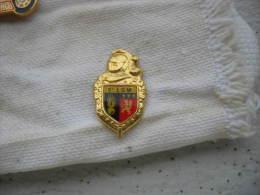 Pin's Doré, Gendarmerie, 5eme LGM - Police
