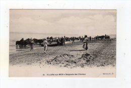 Nov15   1471460  Villers Sur Mer   Baignades Des Chevaux - Villers Sur Mer