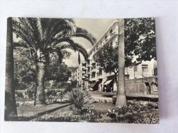 Riviera Dei Fiori - ARMA - Fra Palme E Fiori - Cartolina FG BN V 1959 - Italien