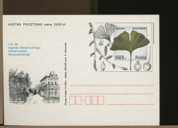 POLSKA - 175 Anni  Università  Botanica  -  GINKBO BILOGA - Vegetazione