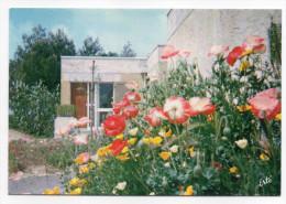 GRASSE--V.V.F-Village De Vacances Pour Familles-Un Pavillon Dans Les Fleurs -cpsm15 X 10 N°992 éd Arts Graphiques - Bénodet