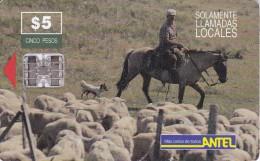 Nº 21 TARJETA DE URUGUAY DE ANTEL DE UN ARRIERO (CABALLO-HORSE) - Uruguay