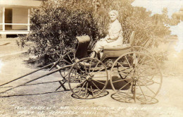 """""""´Your Hostess´ Mrs. John Ingrahm At Beauvoir In Old Buggy Of Jefferson Davis."""" - Other"""
