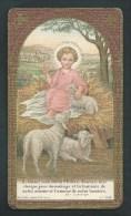 Agnus Dei.  Petit Jésus Et Ses Agneaux.  Très Belle Image Sur Papier épais. Dorures. Bouasse Jeune. LT 608 - Images Religieuses