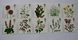 ENDANGERED PLANTS 2009 - Neufs