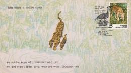 INDE:FDC TIGRE - Raubkatzen
