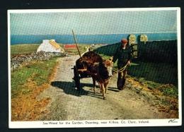 IRELAND  -  Doonbeg  Sea-weed For The Garden  Unused Vintage Postcard As Scan - Clare