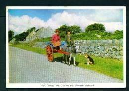 IRELAND  -  Irish Donkey And Cart  Unused Vintage Postcard As Scan - Other