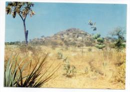 Cameroun--WAZA--1988--Le Campement De Waza ,cpm N° 2 éd Phocal - Cameroon