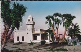 AFRIQUE---DJIBOUTI---mosquée D'Ambouli---voir 2 Scans - Djibouti