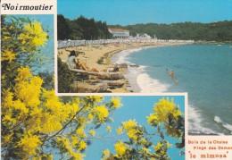 85---ILE DE NOIRMOUTIER---plage Des Dames Et Le Bois De La Chaise---voir 2 Scans - Ile De Noirmoutier