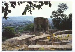 CPM Saint Amand Montrond  Les Ruines De Montrond - Saint-Amand-Montrond
