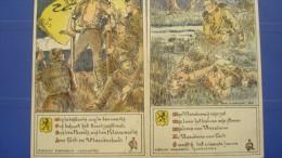 Lot De 10 Cartes Concernant La Cause Flamande - 5 - 99 Postkaarten