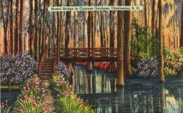 Rustic Bridge In Cypress Gardens,Charleston - Charleston