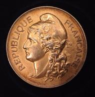Médaille - PREMIER PRIX - ORLEANS 1903 - Profesionales / De Sociedad