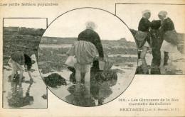 CUEILLETTE DE GOEMON(FINISTERE) - Primel