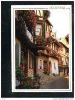68  EGUISHEIM ... Maisons Fleuries - France
