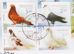 UKRAINE. 2014, Birds, Pigeins Used On Piece - Birds