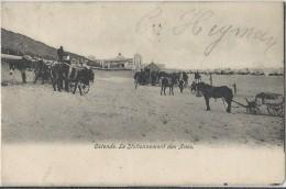 Ostende     Le Stationnement Des Anes,   1905 - Oostende