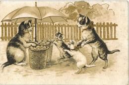 FANTAISIE ANIMAUX CHATS HUMANISES Publicitaire ORLEANS CAFES Jeanne D´Arc : Chats Faisant Leur Marché Parapluie Patates - Animali Abbigliati
