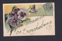 Souvenir De Tinchebray (61) ( Paillette Gaufree Embossed Pensees ) - Otros Municipios