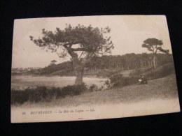 Cpa Du 35  Rothéneuf  - Le Bois Du Lupin -  No 26 -     PAR13 - Rotheneuf