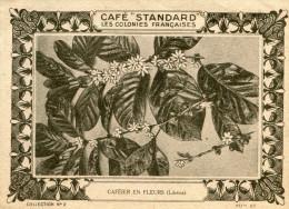 LIBERIA(CAFE) CHROMO - Liberia