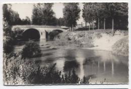 FRANCE ~ Bridge On The Save River LEVIGNAC (Haute-Garonne) C1950's Real Photo - France