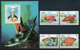 Cuba 1999 / Fish MNH Peces Fische Poisson / C10005  1 - Pesci