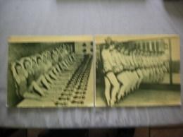 SPECTACLE 2 PHOTOS 23cm/19cm  1 - Repro's