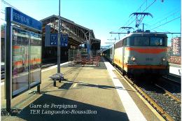Gare De Perpignan , Pyrénées-Orientales , TER Languedoc-Roussillon - Une Photo Reproduit Carte Postale  10x15 Cm. - Stations - Met Treinen