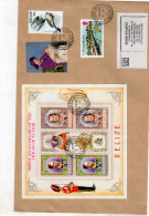 Belize Sheet + Stamps On 1995 Cover To Holland  (b176) - Belize (1973-...)