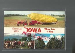 Cpm St000450 Iowa  Where Corn Is King (pays Du Mais Roi) Tracteur , Vache , Champ De Mais - Etats-Unis