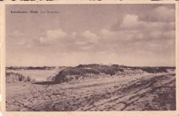 KALMTHOUT / CALMPTHOUT : Heide - Les Bruyères - Kalmthout
