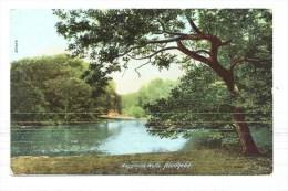 Waggoners Wells, Hindhead - (C175) - Surrey