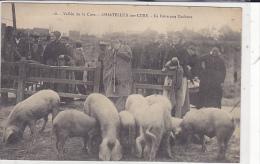 89. CHASTELLUX SUR CURE. N 18. GROS PLAN LA FOIRE AUX COCHONS  AN 1909.   CPAA - Autres Communes