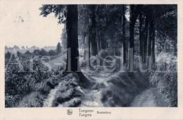 Postkaart / Post Card / Carte Postale / Tongeren / Beukenberg / Foto Nels, Uitgave Theelen, Tongeren - Tongeren