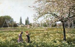 Postkaart / Post Card / Carte Postale / Liège / Luik / Nature / Ed. Uvachrom - Liege